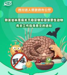 图jiee拇ㄊen民政fu办gong厅转发省林草局关于稳妥zuo好禁食野生动物有关工作指导yi见的通知
